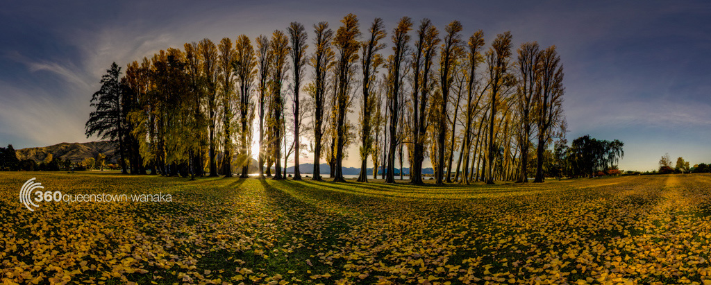 360 Panorama of Autumn Colours in Wanaka